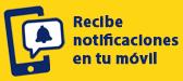 Recibe notificaciones </br> de vuelos en tu móvil